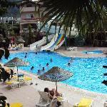 Palm Garden pool