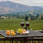 Valley views of the beautiful orchards