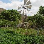 Typical windmill used to extract water for agriculture