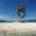 Island of the beach