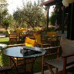 Poseidon bar garden area