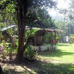 Casita 5 and gardens