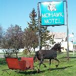 Mohawk Motel Horse Massey