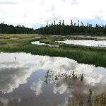 Salt River Wanderung