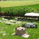 Scorcio dell'ampio giardino
