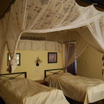 Foto de Stanley Safari Lodge
