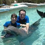 Our dolphin swim experience at Miami Seaquarium