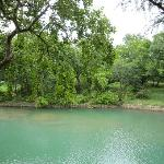 Guadalupe river - view from the deck