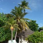Beach Bungalow and palm trees, Madoogali Island.