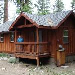 Our Cabin In The Pines