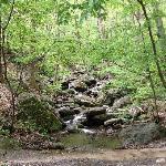 Charming streams where we saw deers
