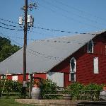 The old barn highlights the vineyard