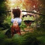 The curious treehouse adventure