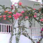 Photo de Hotel Rodes