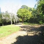 Private Driveway to Cabin
