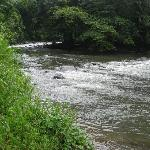 Arenal River