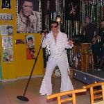 the elvis bar