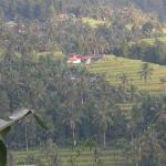 Photo de Karangsari Guest House