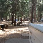 View of our campsite, # 213