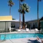 The amazing pool and the palm tree rock garden.