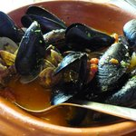 Yummy steamed clams/mussels