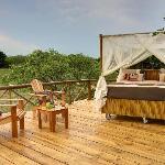 Balcony Dream Treehouse