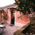 garden outside suite don fabrizio don paolo