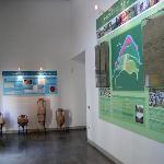 Guado al Melo's museum