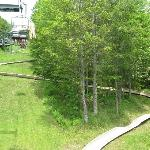a look at one of the alpine slides