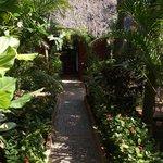 Garden path to the kitchen