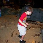 kids digging for dinos!