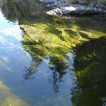 El agua, un espejo