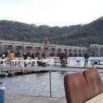 Great Alma Fishing Float October