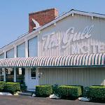 Photo de The Gull Motel, Inn and Cottages