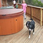 Great hottub and deck