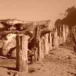 Old piers at the river