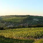 panorama sancerrois