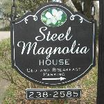 Steel Magnolias House