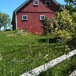 The barn leads to a hill filled with berry bushes