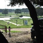 View of the playground, pond, guests-only petting zoo area