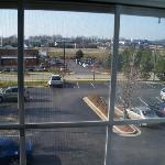 Window View-1