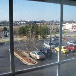 Window View-2