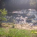 Steinhatchee Falls