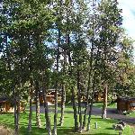 Somers Bay Log Cabin Lodging