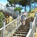 steps down to falsia beach