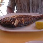 Photo of El pescadito