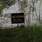 Beware of Crocodile!!!