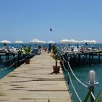 the jetty