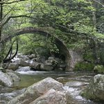 Photo de Gorges de Spelunca