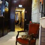 Isis - hotel security cat